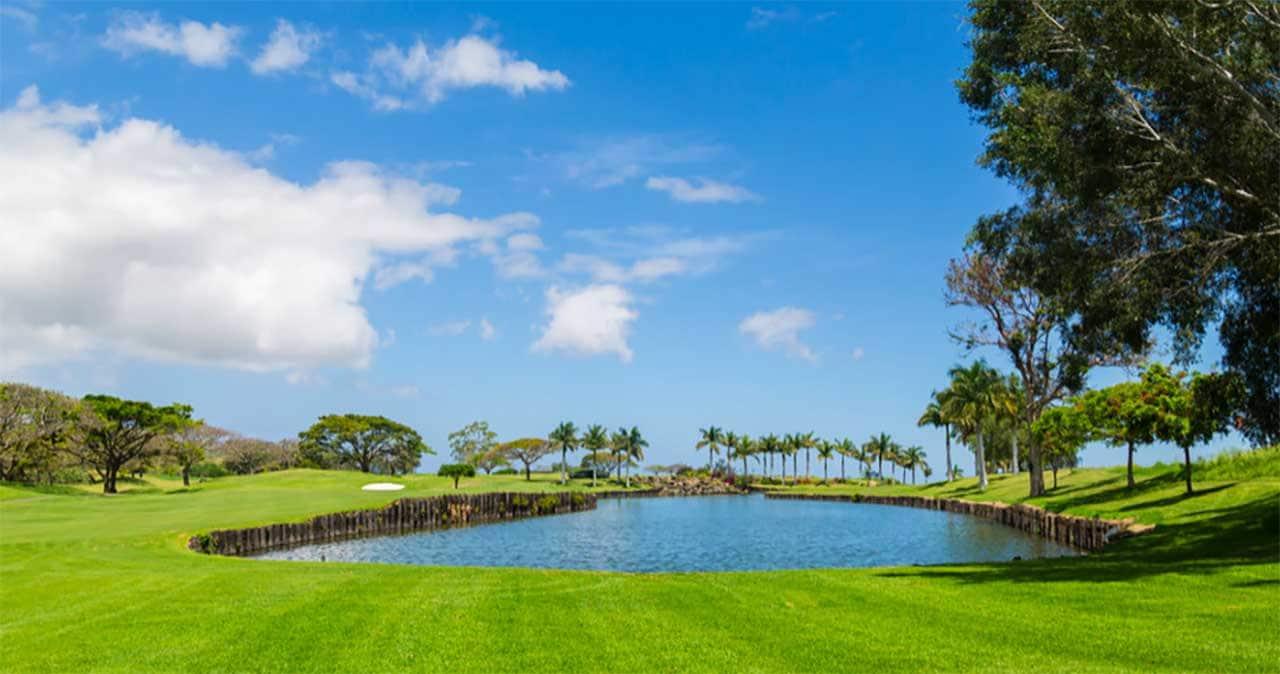 Golf Hawaii 8